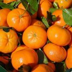 clementines-318210_640